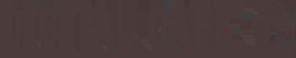 Logo - Brown - Digital Cafe